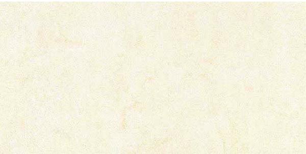 Mars Stone Porcelain from Lint Tile-12x24-MARS-STONE-WHITE-MS01