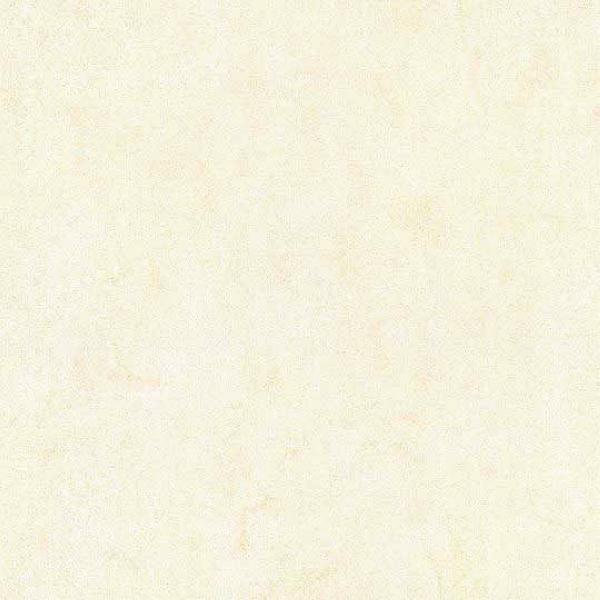 Mars Stone Porcelain from Lint Tile-24x24-MARS-STONE-WHITE-MS01