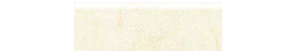 Mars Stone Porcelain from Lint Tile-4x12-bullnose-MARS-STONE-WHITE-MS01