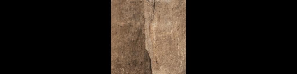 States Nut 6x6 Porcelain Floor or Wall Tile