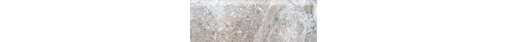 Fossilique Stone 4x12 Bullnose Porcelain Floor Crystal Gray
