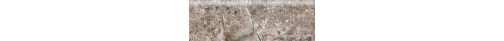 Fossilique Stone 4x12 Bullnose Porcelain Floor Mineral Umber