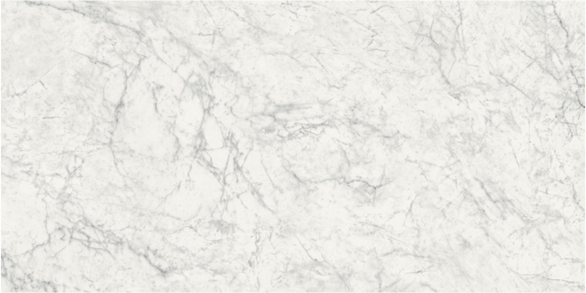 Earth Carrara Porcelain 24 x 48 Floor Tile